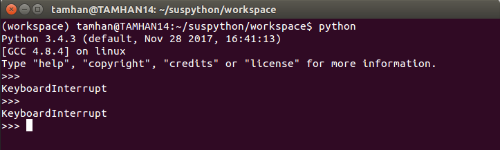 Python tutorial - Fig. 3: The interpreter doesn't seem to be overly impressed by the keyboard interrupt